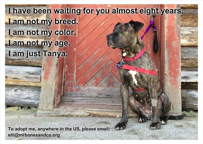 Tanya Red Door Final