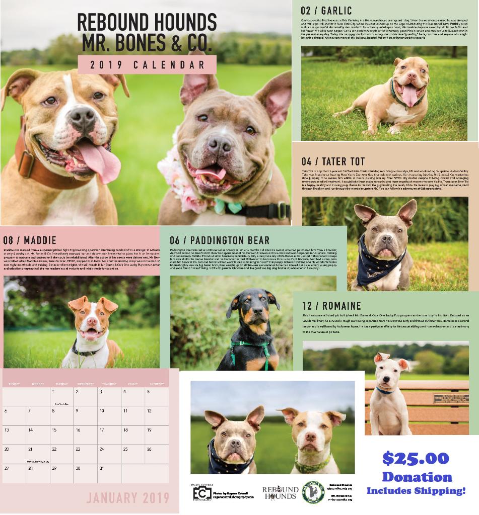 2019 Rescue Calendars